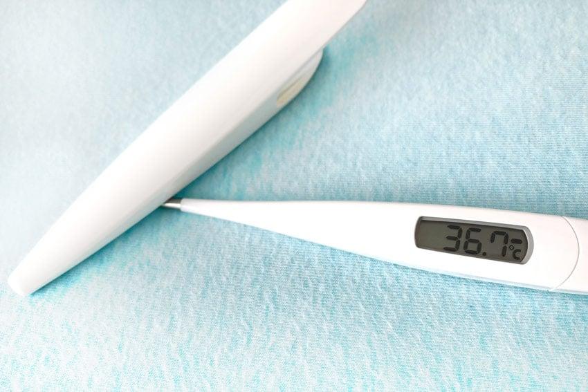 スタッフの健康管理(体温の測定)